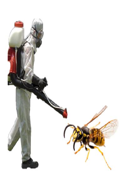 Combate las avispas sin fracasar en el intento